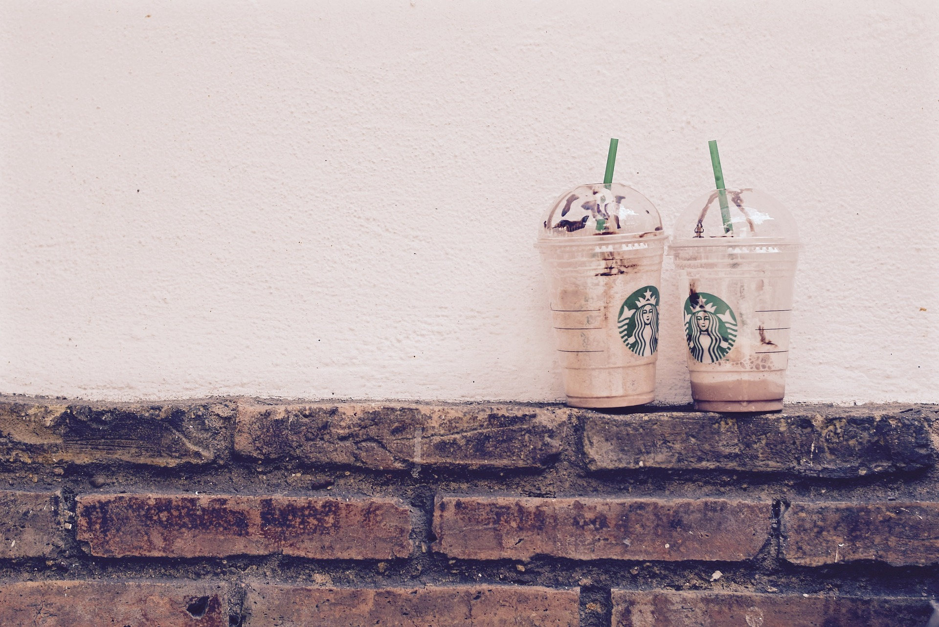 Starbucks Customer Loyalty Program Brews Momentum