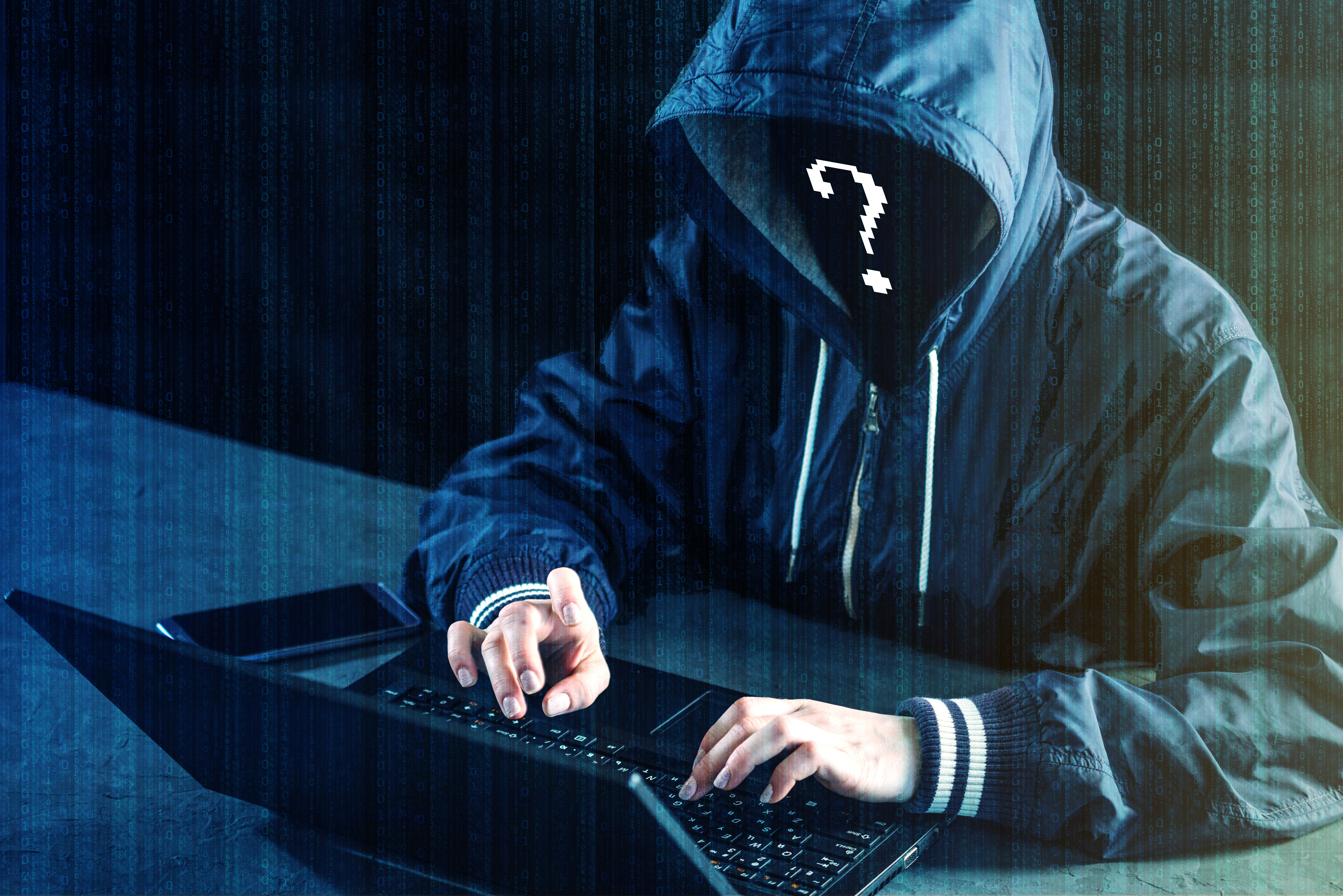 Hacking the Credit Card Hackers